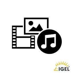 IGEL Multimedia Codec-Pack